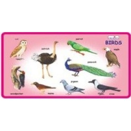 Creative Educational Aids Play and Learn Birds (0333)
