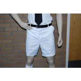 School Uniform Shorts White (Elastic)