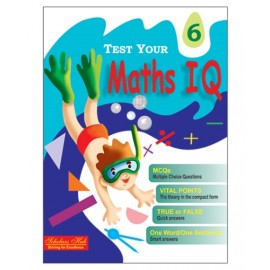 Scholars Hub Test Your Maths IQ for Challenging Minds for Class 6