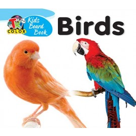 Tricolor Kids Board Book Birds