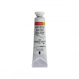 Camlin Kokuyo Artists' Water Colour Tube 20ml (White)
